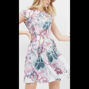 New. Ted Baker Mah Floral-Print Fit & Flare Dress